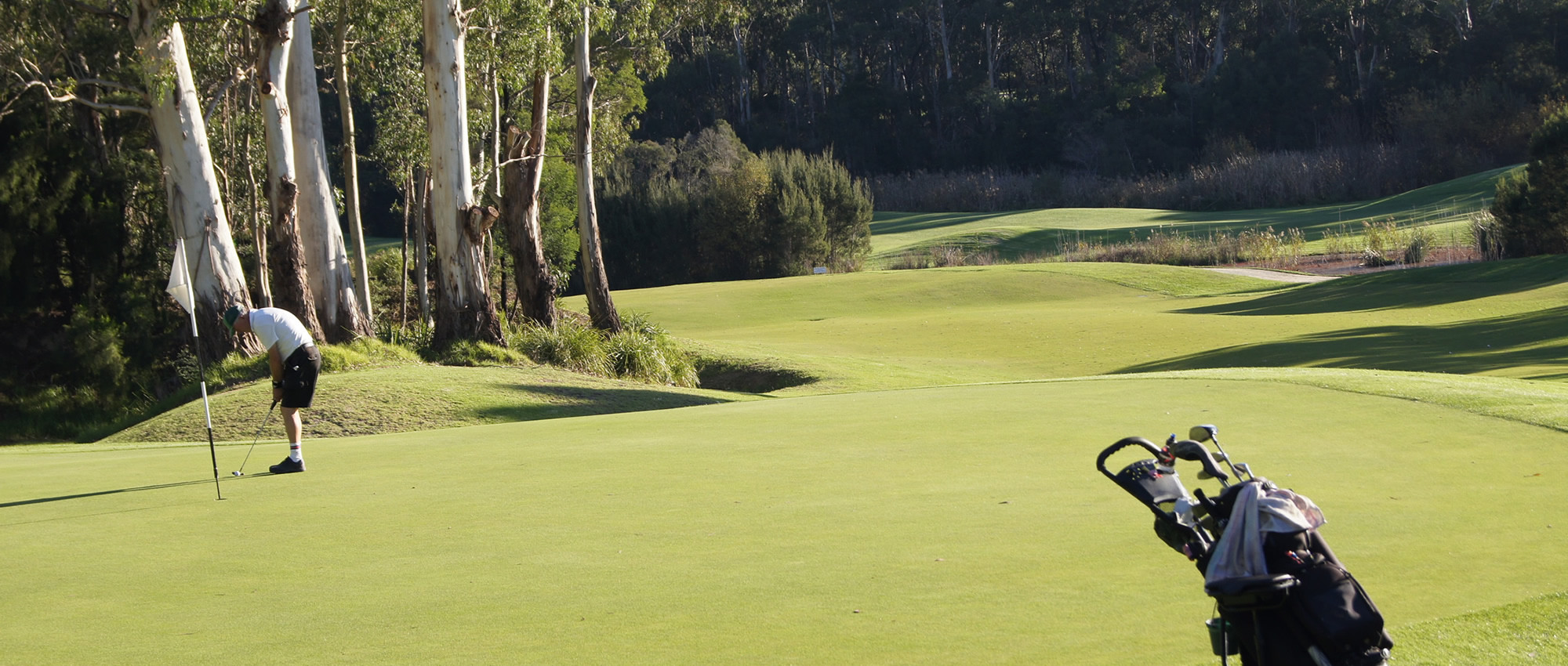17th Berwick Montuna Golf Club